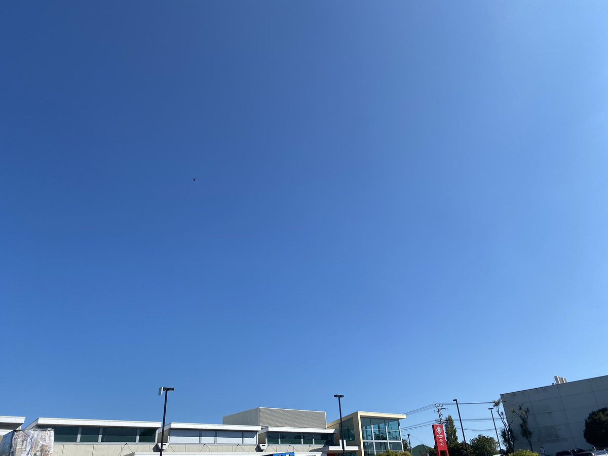 A bright blue cloudless Auckland sky while I queue for over an hour to get into the supermarket #covid19