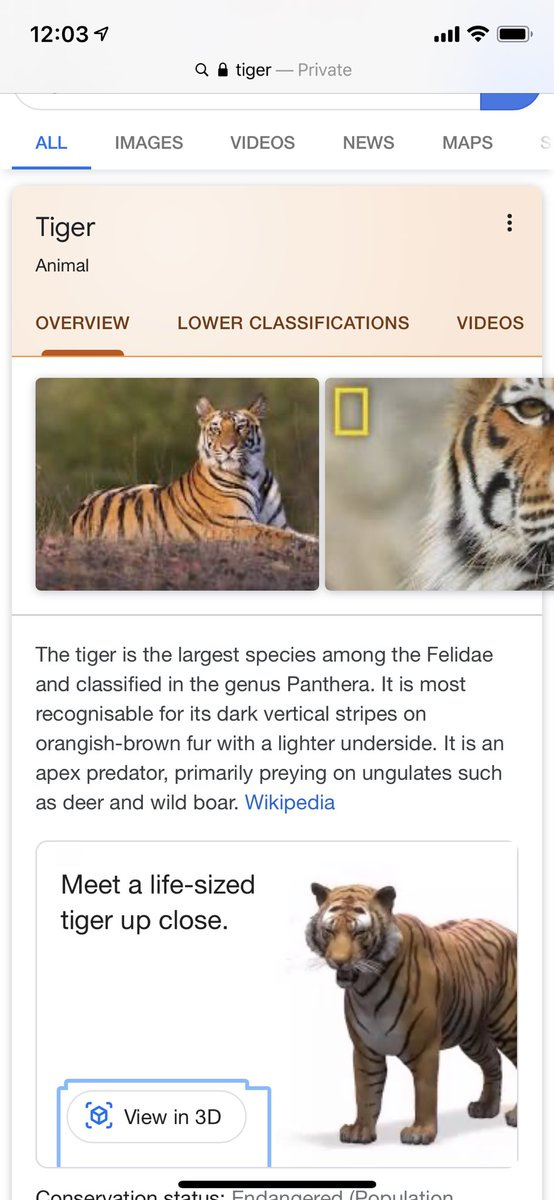 google animal hologram