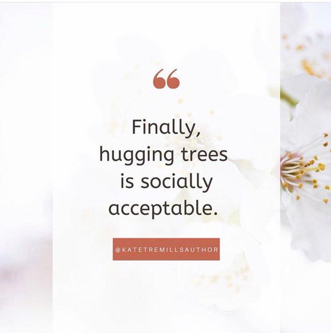 's Media: Finally. 🌳☺️ #naturelover #hugs https://t.co/McdP0xu6Fv
