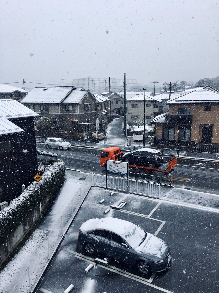 I thought it's the end of March. Spring has already come... #Tokyo pic.twitter.com/dVe3bVyb9K
