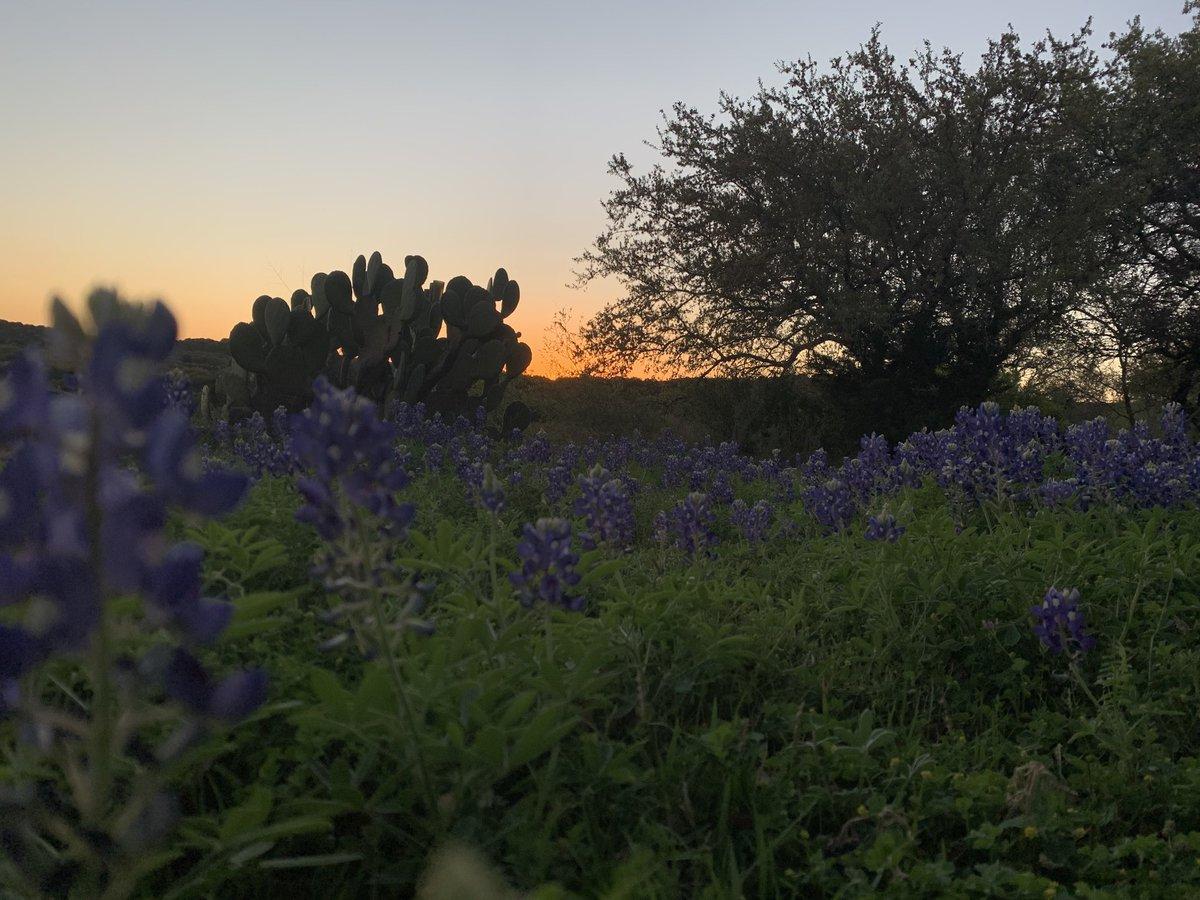 @TxStormChasers SW Burnet Co. #sunset pic.twitter.com/PAdVhttvVn