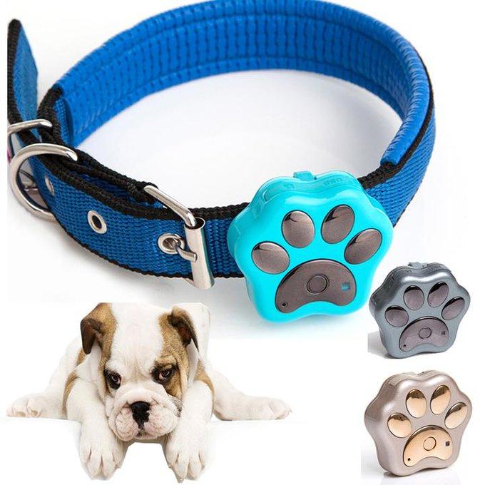 's Media: Waterproof GPS!! #dog #dogs #mydog #doglife #ilovemydog #puplife #gps https://t.co/p9QIuje3FV