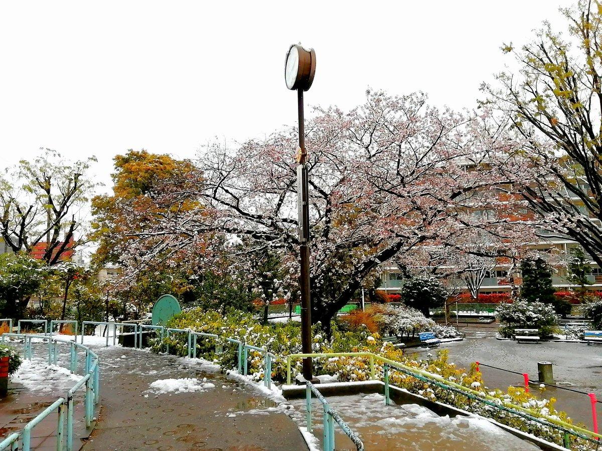 世の中 に た えて 桜の な かり せ ば 春の 心 は のどけから まし