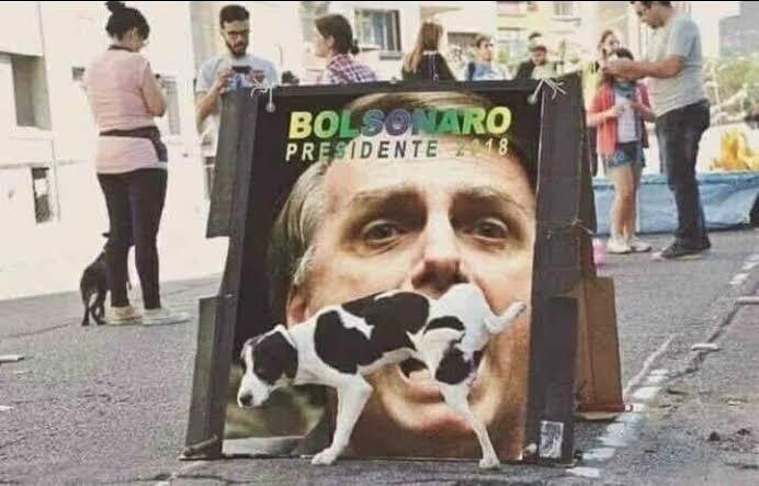 #haikai #haiku #poesia #poetry #escritor #writer #WritingCommunity #ComunidadeLiteraria #BolsonaroGenocida #ImpeachmentDeBolsonaro O antigo grito Independência ou morte Virou mugidopic.twitter.com/NX0HB4hEZP