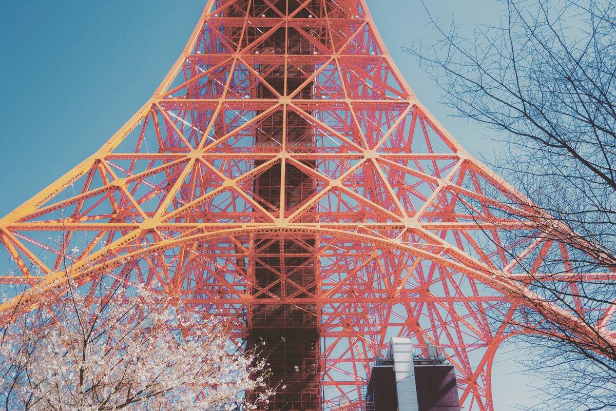 日本晴れピクチャーズ BONJOUR LE JAPON 4 Tokyo Tower   @nopponotouto #sonyalpha #nipponbare #Tokyo #iphone #leica #tokyo #tokyotower #zojyoji   #français #shibuyasky  #vr #japonais #instagood  #tbt #photooftheday #iphonesia #picoftheday   #love