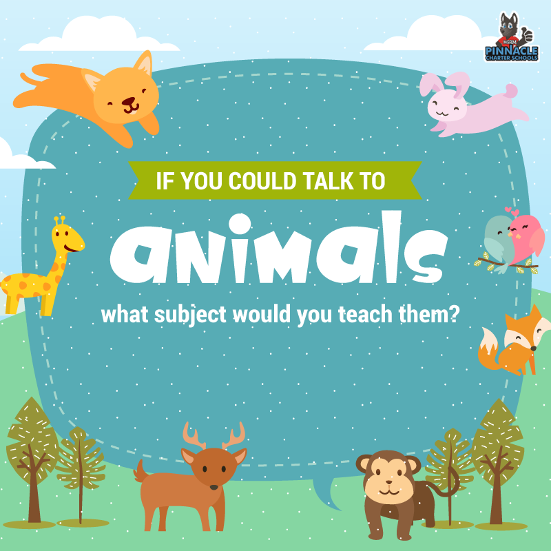 Get your mind working and tell us your creative opinion!  #opinion #funny #question #letusknow #brainstrain #funnyopinion #animals #class #subject #education #onlineeducation #virtualclassroom #onlinecourses #arizona