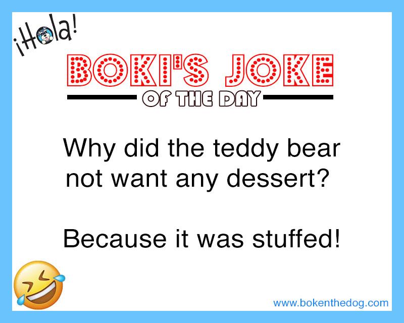Here's a Joke. Spread the word and put a smile on someone's face Like and share Arrrhhhooooo!  #bokenthedog #kidsebook #joke #funny #jokeoftheday #kidsjoke #funnyjoke
