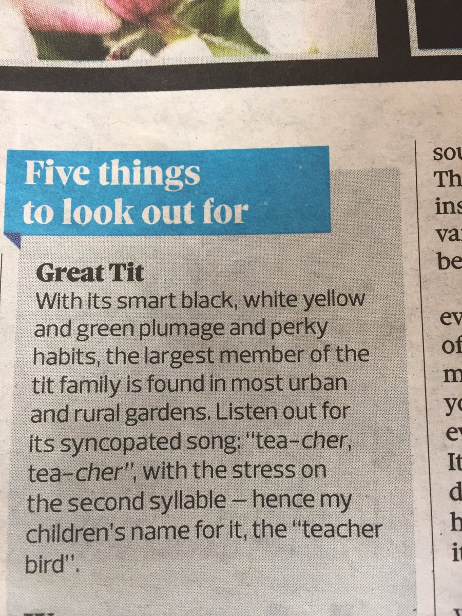 Couldn't possibly comment on this ... #teacher @ObserverUK #chortle #youtryingtowindmeup? #greattit