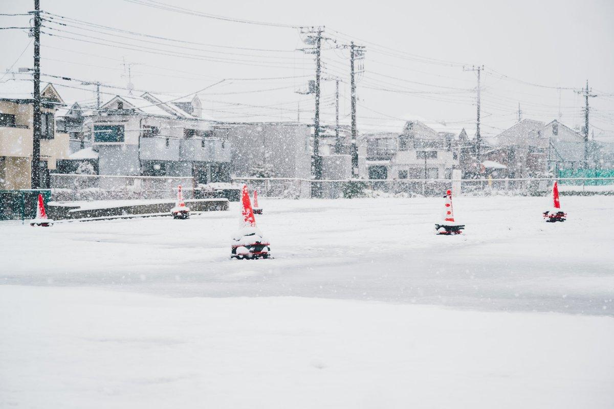 Spring Snow (6) #tokyo #snow #postapocalypticpic.twitter.com/YKq0zCxnbw