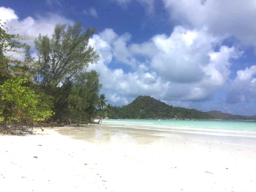 Die Webseite meiner #Seychellen-Reise Ende Februar/Anfang März mit Videos und Fotos online: Von #Anse #Volbert auf #Praslin zu den              Naturschutz-Inseln #Cousin und #Curieuse, zu Schildkröten und exotischen Vögeln -