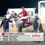 Image for the Tweet beginning: Congratulations to @AjaxDowns leading trainer