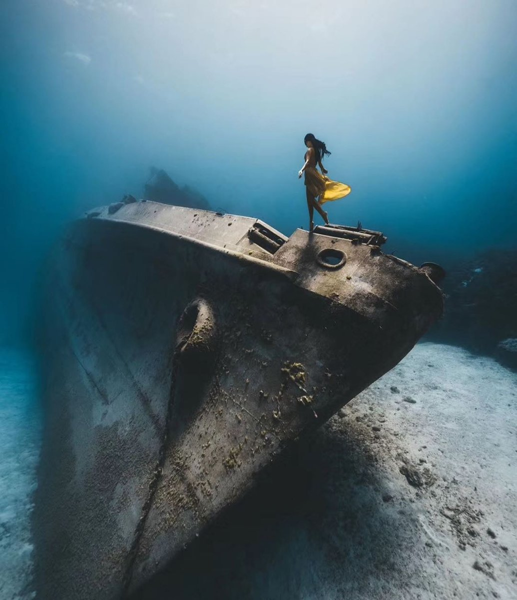follow us for more visit @freedivinguae⁠ http://freedivinguae.com ⁠ @apnea.pirates⁠ Repost@cuishuolivia0126 #diving #freedive #adventure #ocean #apnea #scuba #freediver #sea #scubadiving #diver #sealife #deeperblue #protectocean #underwaterlife #onebreath #oceanvibes #divinglifepic.twitter.com/TPEBMncstG