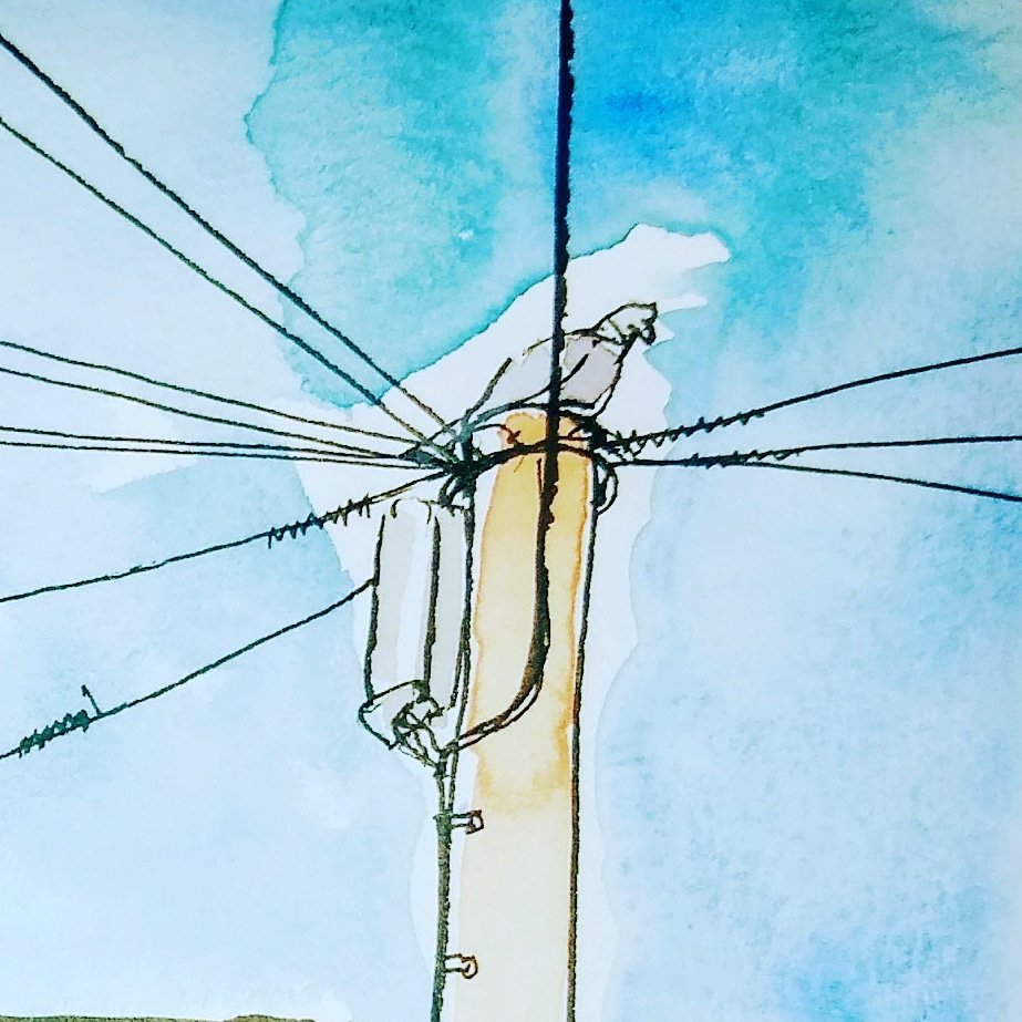 Pigeon on top of the telegraph pole at the end of our street. #sketch #draw #paint #watercolour #ink #pigeonpic.twitter.com/X9JzWhdKYl