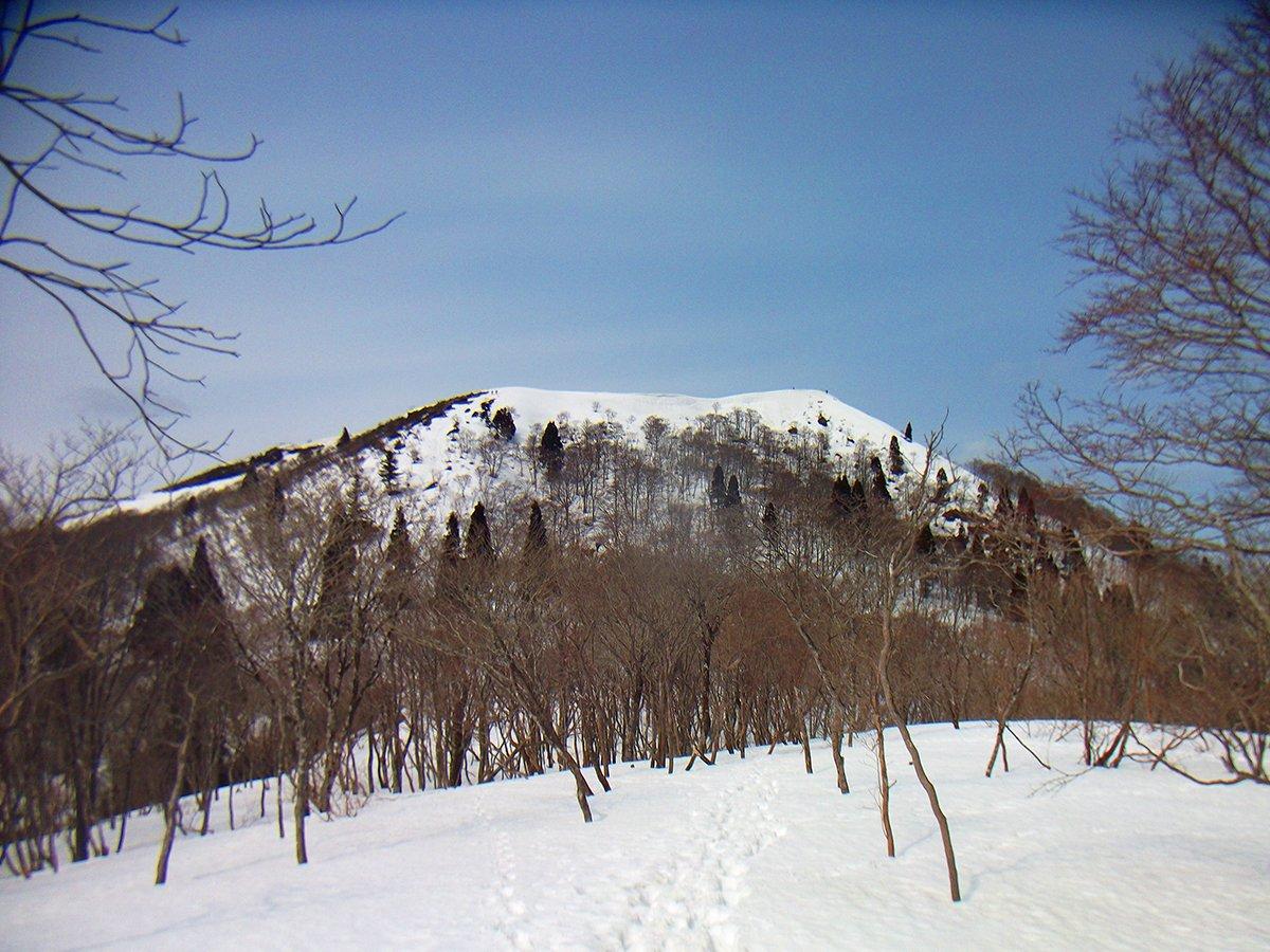 ryota24mm photo