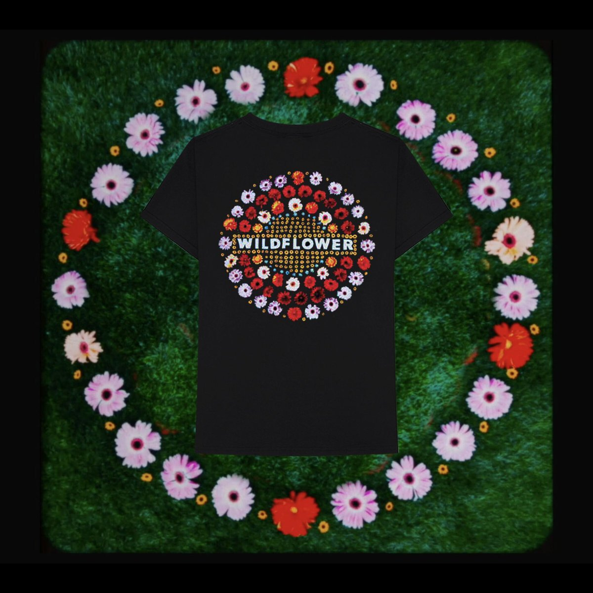 USA, Get your Wildflower/CALM merch now: 5secondsofsummershop.com