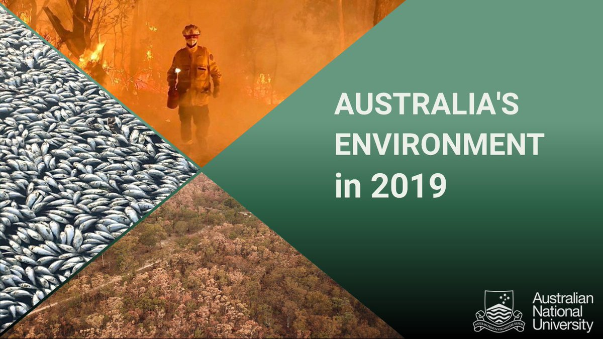 2019 was the driest, hottest, and generally worst year for Australia's Environment in many decades.