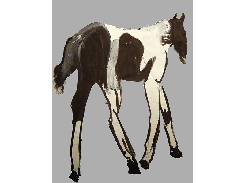 "https://www.horsenation.com/2020/03/30/something-lovely-the-spot-movie/ … If you're looking for something lovely to watch while you're staying at home, take five minutes to watch ""The Spot Movie."" #horsemovie #equestrianart pic.twitter.com/mQaOJaquuC"