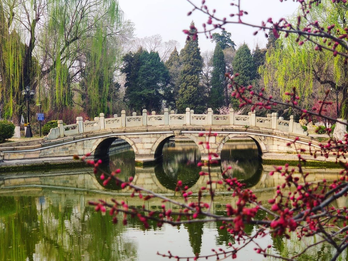 As the beautiful sights in #PekingCampus are reflected on the surface of Weiming Lake, #Pekingers around the world eagerly await their return to #Peking University. Photos by: Olesya Dovgalyuk