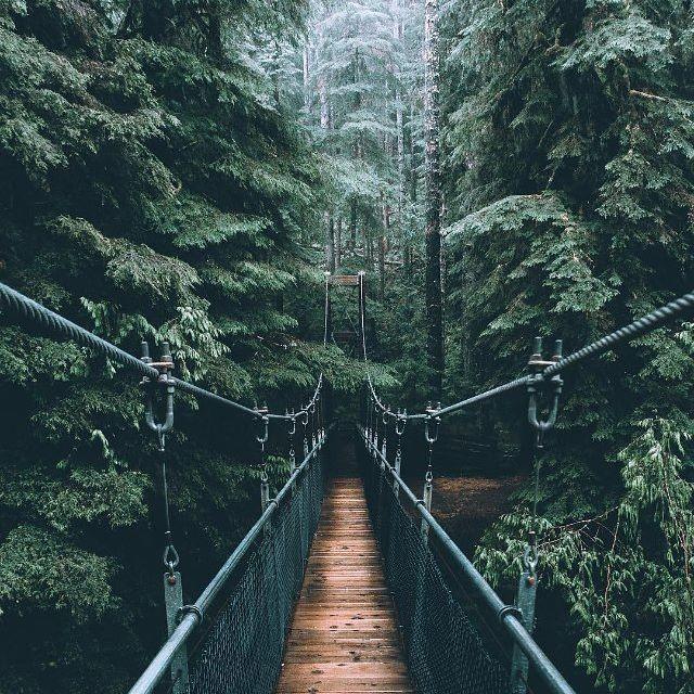 Nature.....