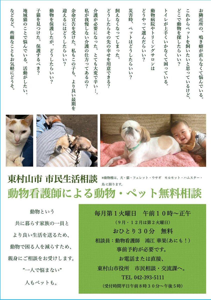 #東村山市  #ペット無料相談  #動物看護師 pic.twitter.com/Yg2OlztFq2