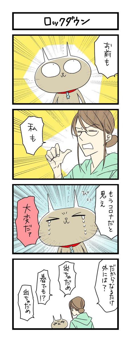 【夜の4コマ部屋】ロックダウン / サチコと神ねこ様 第1286回 / wako先生 – Pouch[ポーチ]
