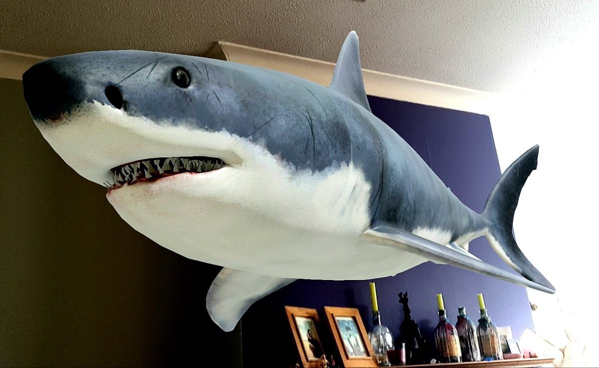 Things are just getting weirder round my place... #lockdown #greatwhite pic.twitter.com/JENOkIwlG2