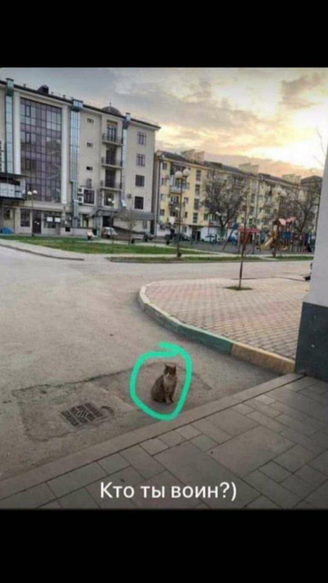 Социально безответственный житель Грозного привлечен к ответственности. #Грозный #Карантин #Коронавирусpic.twitter.com/LKur9XGdxN