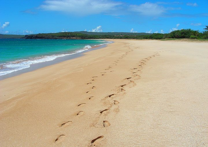 Western Molokai is known for its empty white-sand beaches. #Hawaii #traveltips