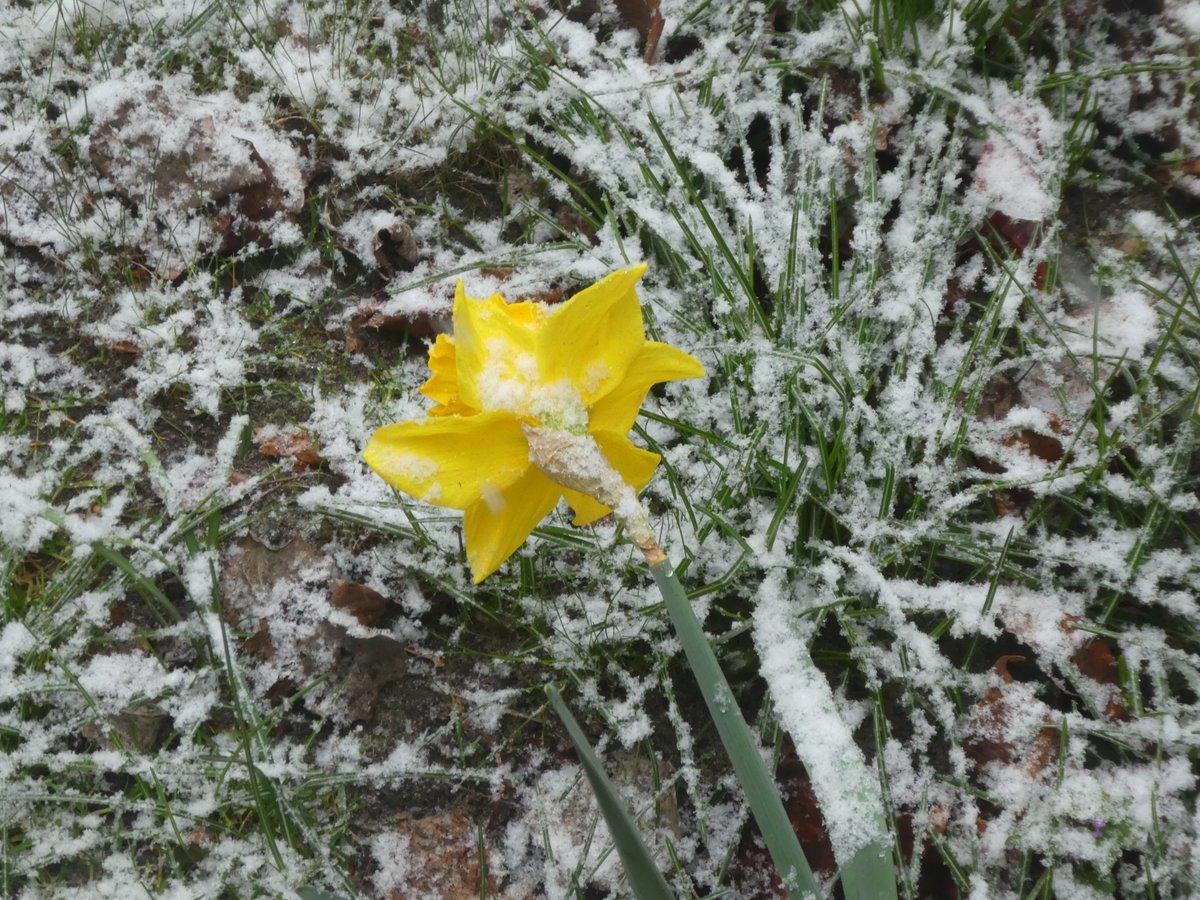 #Schnee