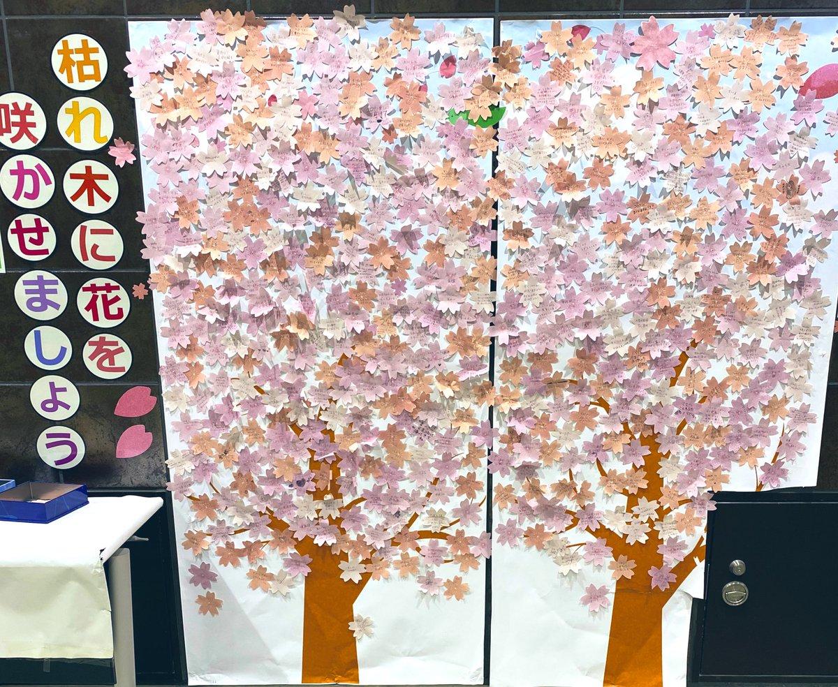 板橋駅の花、溢れんばかりにいつだって何だって、物事は一人一人のささやかな行為が重なって動いていく。 #板橋 #埼京線 pic.twitter.com/uss9S2s57t