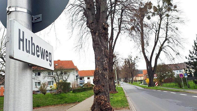 #Baumpflege: Auf dem #Hubeweg in #Einbeck zwischen Einmündungen Friedrich-Ebert-Straße und Am Weidenfeld kommt es am Mittwoch, 1. April, zwischen 8 und 17 Uhr zu Verkehrsbehinderungen und teilweisen Sperrungen, teilte heute der Kommunale #Bauhof @Stadt_Einbeck mit