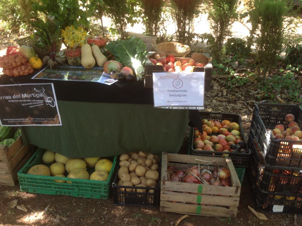 Ante el #COVID19 una de las respuestas contundentes es la #agroecologia, por eso es fundamental apoyar los canales cortos de comercialización de alimentos. Proximidad, territorio y economía local #SOScampesinado https://t.co/8LfKTr2TdT https://t.co/EH9BXmtclx