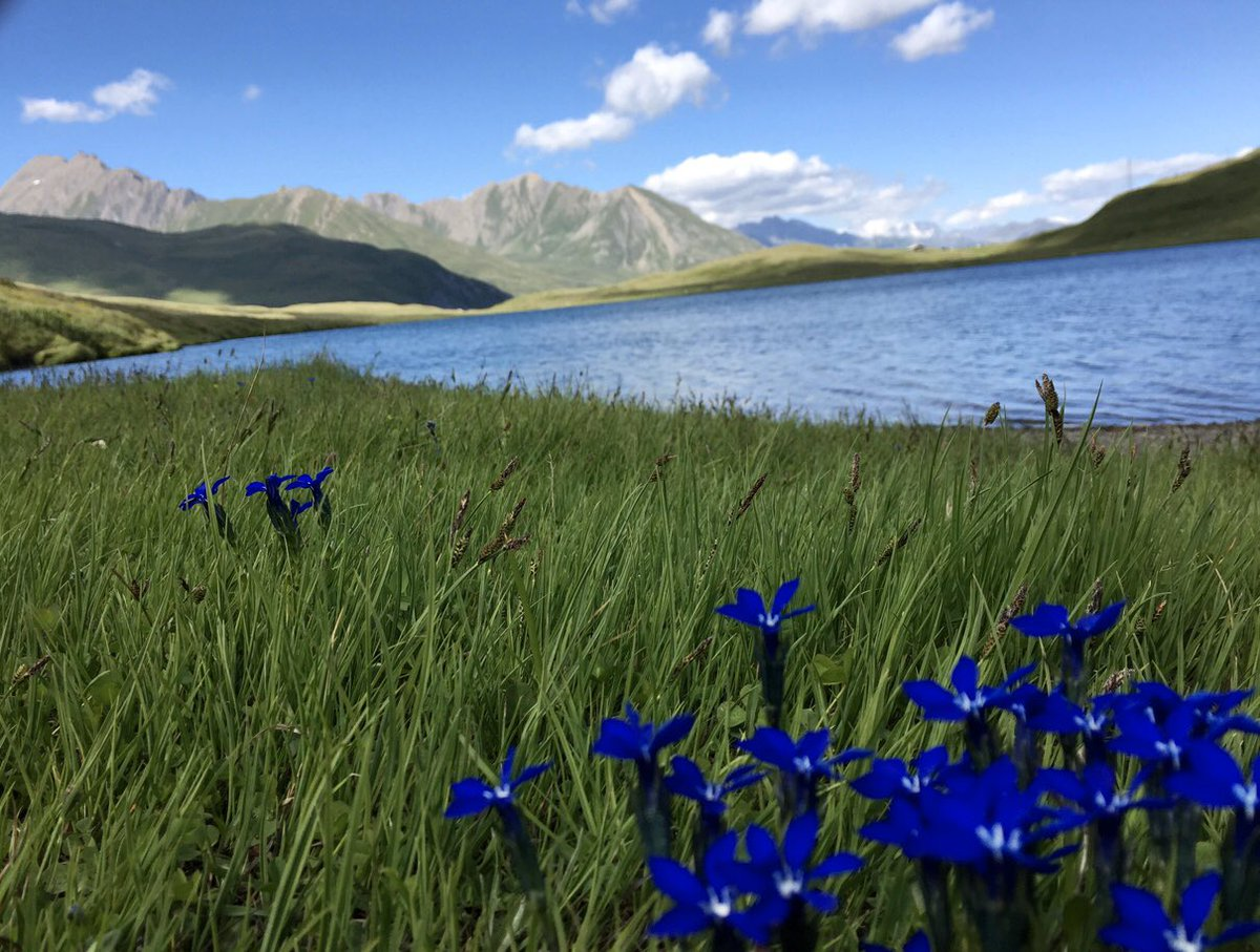 By C.B.#nature #landscape #naturephotography #naturelovers  #photography #mountains #trek  #Beautiful  #mountains  #hiking #lake pic.twitter.com/XbtInG18uA