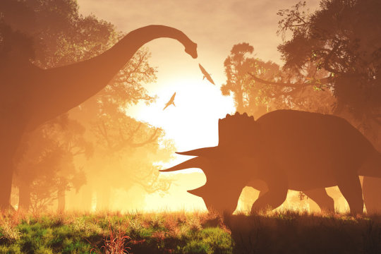Earth turned faster at the end of the time of the dinosaurs than it does today according to a new study! Read more here: http://ow.ly/sM0T50yKM8J  #science #stem #scienceiscool #earth #steam #stemeducation #stemedpic.twitter.com/wxtGkP2m4L