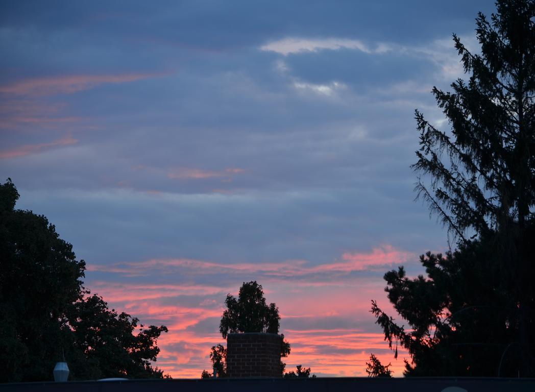 #sunset  #vienna