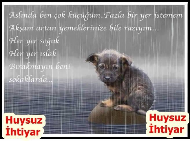 #twitter #instagram #facebook #istanbul #instagood #türkiye #izmir #youtube #turkey #ankara #instalike #tbt #video #photography #şiir #komedi #likeforlikes #tumblr #takip #antalya #samsun #manisa #love #gt #twit #gündem #ttolma #sakarya #followforfollow
