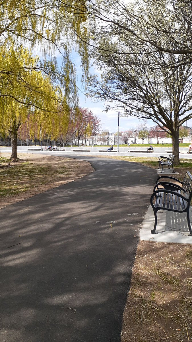 Today is #NationalTakeAWalkInThePark day! Practice social distancing, but get out to take in some fresh air and strengthen your lungs with deep breathing while you're at it! Don't forget your Journal! #MotivosResilienceEdition #StressFree #MotivosMagpic.twitter.com/MQgLpaGnUC