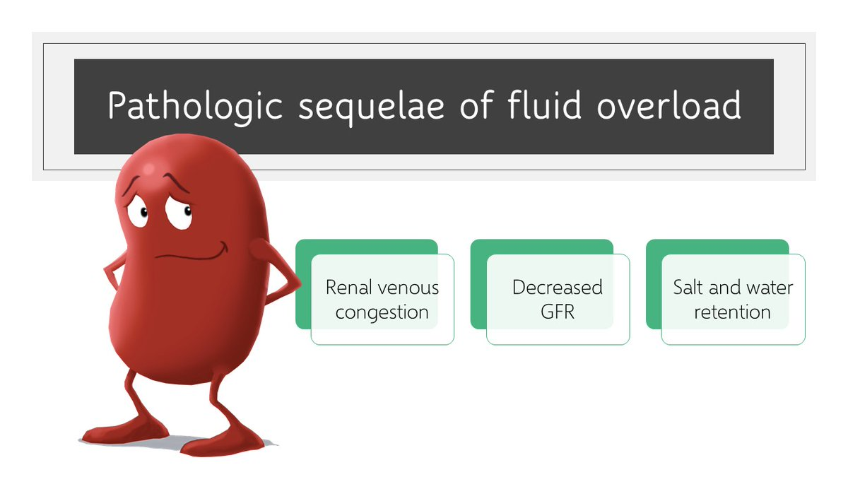 Nephropocus On Twitter Kidney Nephrology Probably Commonest Reason To Administer Empiric Iv Fluids Is Renal Failure Which Does More Harm Than Good If Aki Is Due To Fluid Overload Https T Co Ntbzuqgfp6