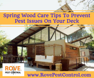 Spring Wood Tips To Prevent Pest Issues On Your Deck    #wood #spring