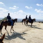 Image for the Tweet beginning: Over the weekend @LapdMounted assisted
