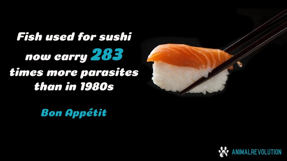 Sushi anyone? Choose vegan sushi and save a fish (and yourself)!   #Sushi #Fish #MeatMarch #MeatyMarch #MeatFreeMarch #GoVegan #Vegan #PlantBased #Fishing #AsianFood #Vegans #VeganFoodpic.twitter.com/BDfQGHuYpg