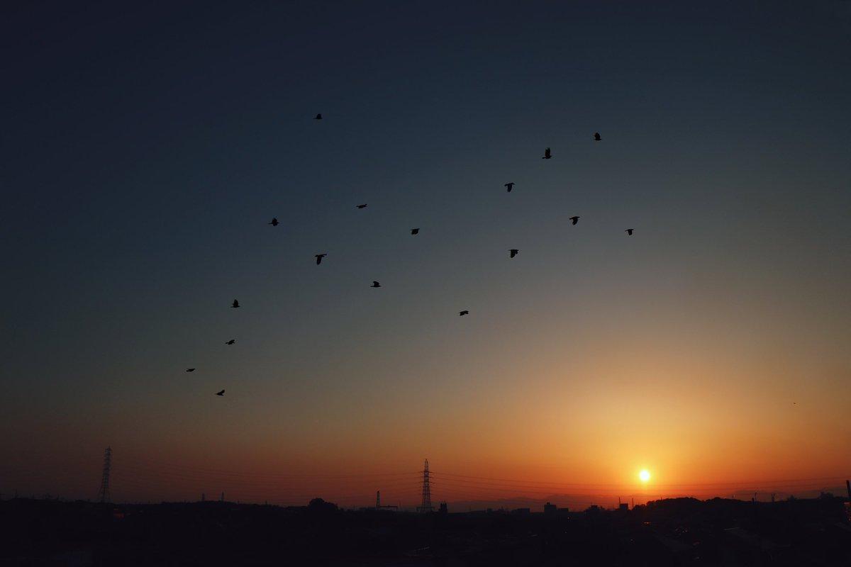 Today's Sunset.  #写真撮ってる人と繋がりたい  #写真好きな人と繫がりたい  #ファインダー越しの私の世界  #夕陽 #夕日 #sunset  http://instagram.com/rie._.gram/pic.twitter.com/k0fwxFWeBg