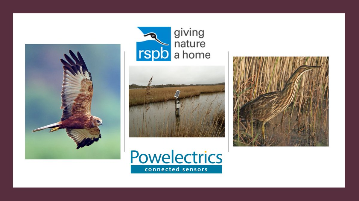 @RSPBEngland use Powelectrics Metron telemetry to remotely #monitor #water #level at a number of reserves. Solar-powered, weatherproof #telemetry devices report #data to our #MetronView #cloud, with alerts to unlimited users on any web-enabled device.  #m2m