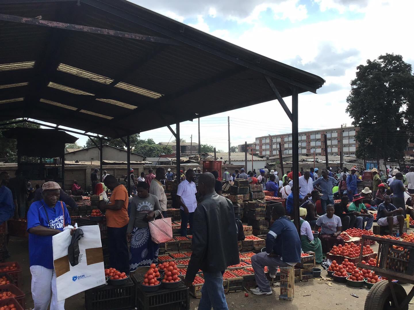 Mbare Msika