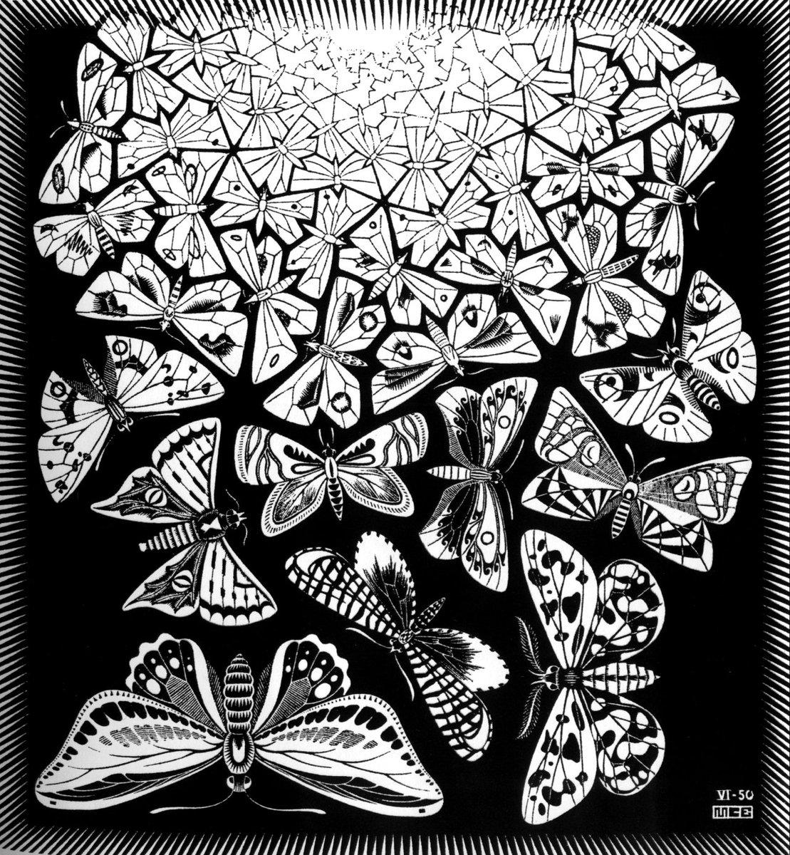 Butterflies, 1950 #escher #mcescher