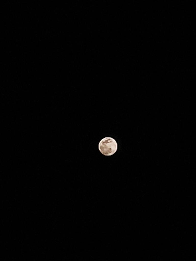[ Super Moon ] Shot on Redmi Note8 Pro ▼Setting▼ WB : Auto F : Auto S : 1/500s ISO : 3200pic.twitter.com/zwlsSVNZxE