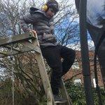 Image for the Tweet beginning: Liam has been doing very