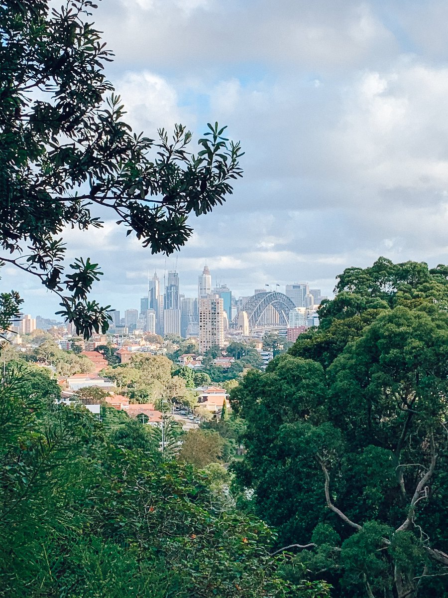 A quick walk to freshen the mind with some lovely #sydney views   Of course I was still #SocialDistancing    Now back at home for a boring night on the laptop pic.twitter.com/tqexJfudsl