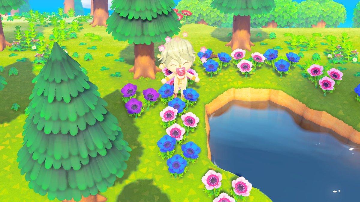 の 紫 森 アネモネ どうぶつ の 【あつ森】花の増やし方(品種改良)【あつまれどうぶつの森】