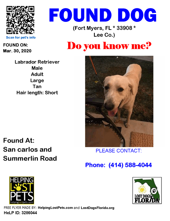 FOUND DOG ~  Do you recognize me?  #FortMyers (San carlos & Summerlin Road)  #FL 33908 #Lee Co. , #Found #Dog 03-30-2020!, Male #LabradorRetriever Tan/ Has a blue collar and had a rope tied to his collar. Appeared to be chewed.   More Info, Photos and to Contact: …pic.twitter.com/0RWXCEWUnc